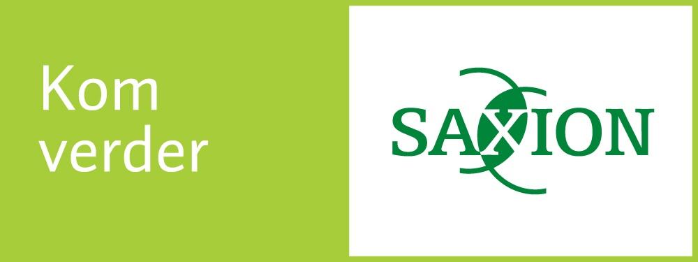 Logo Saxion 2013